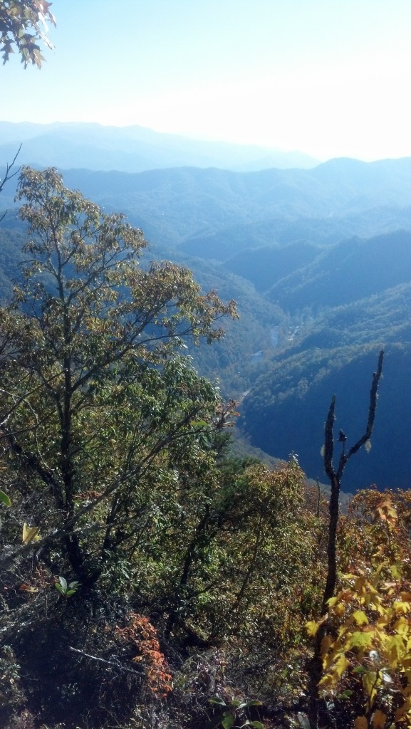 A view of Nantahala Gorge from the top of the ridge.